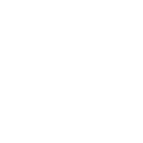 flame icon white