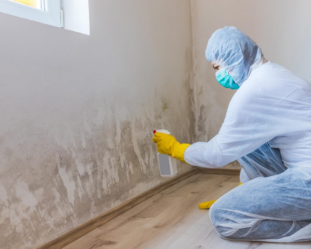technician spraying to remove mold