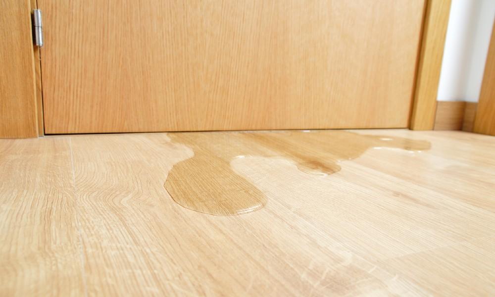 Water pooling under a closed door, damaging hardwood floor